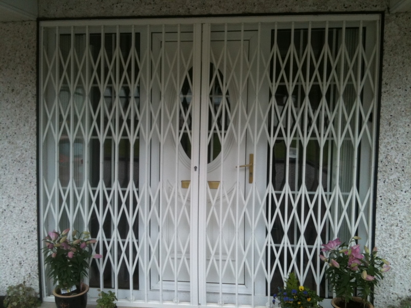 Home Security Doors & Window Company for Sale